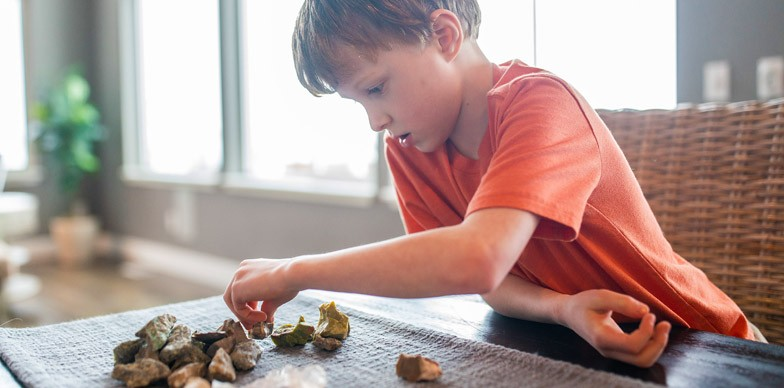 Boy Counting Rocks